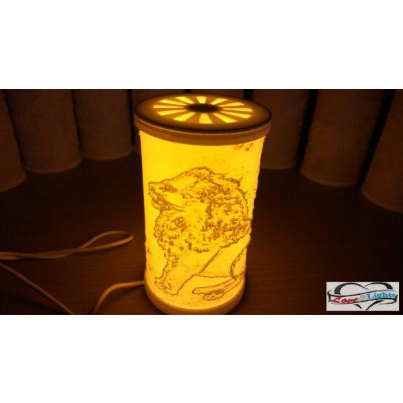 Oroszlán mintás lámpa