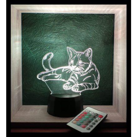 Macska mintás lámpa