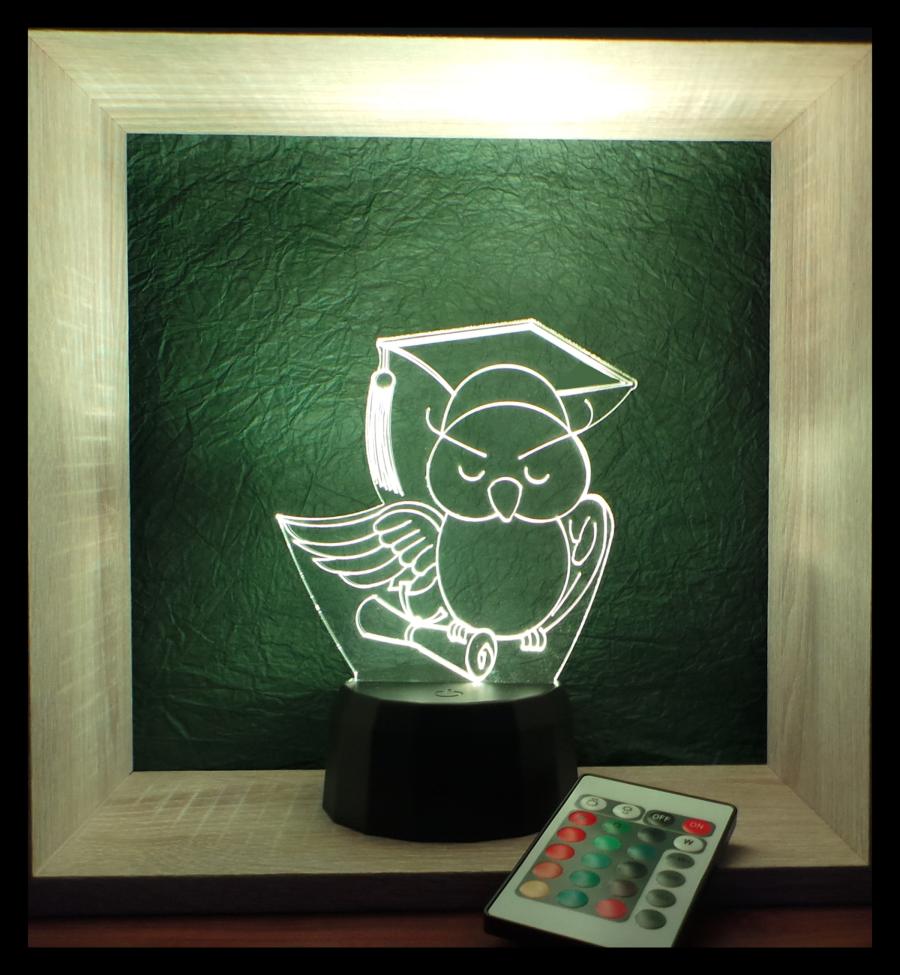 diplomaosztós bagoly egyedi ajándék love and lights