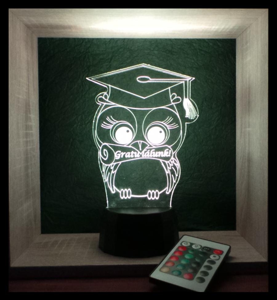 bagoly mintás lámpa ballagásra, diplomaosztóra egyedi ajándék love and lights